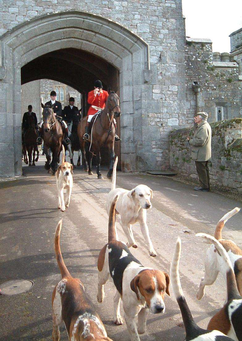 Master of the Fox Hounds