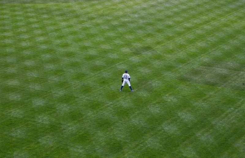 outfield
